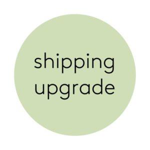 Theseamazingthings upgrade shipping cost